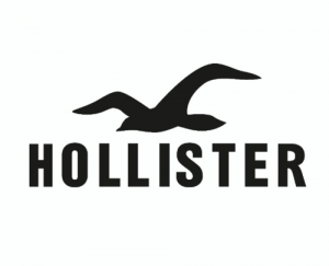 Hollister Coupon
