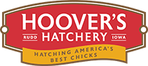 Hoover's Hatchery Coupon